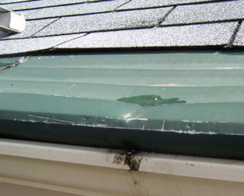 ROOFER DAMAGE: LADDER DAMAGE AND SCRAPES FROM LADDER