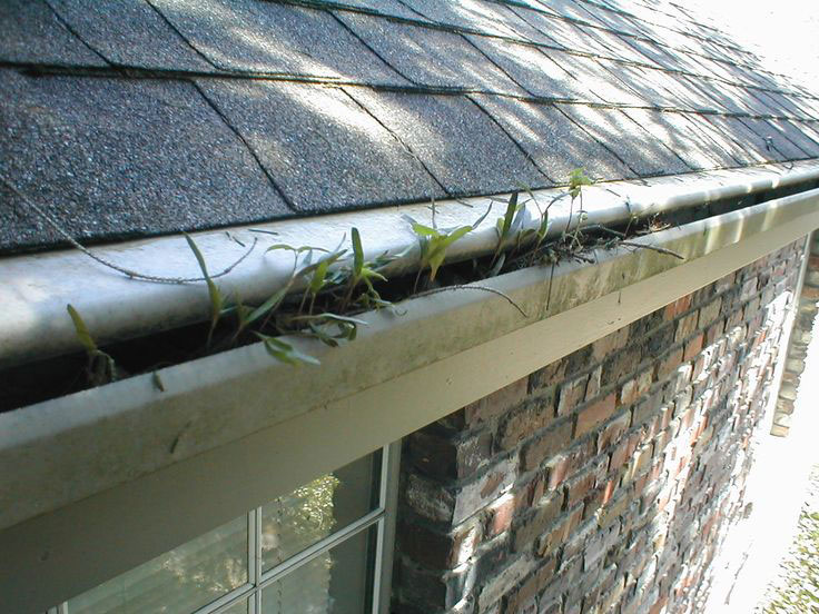 One Piece Gutter Protection Systems Classic Home Center