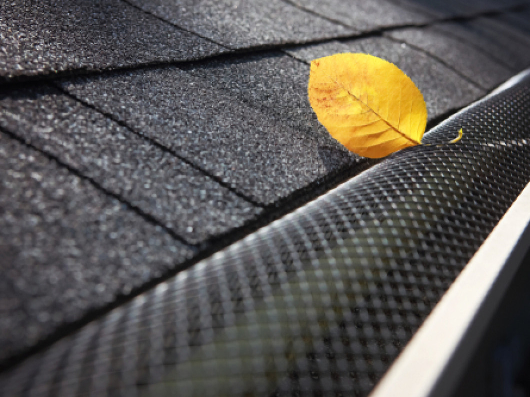 Guard Your Gutters Against Everyday Damages